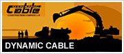 Visit Dynamic Cable's Website